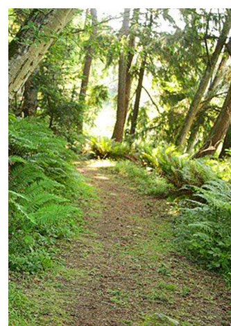 explore whidbey island parks and gardens